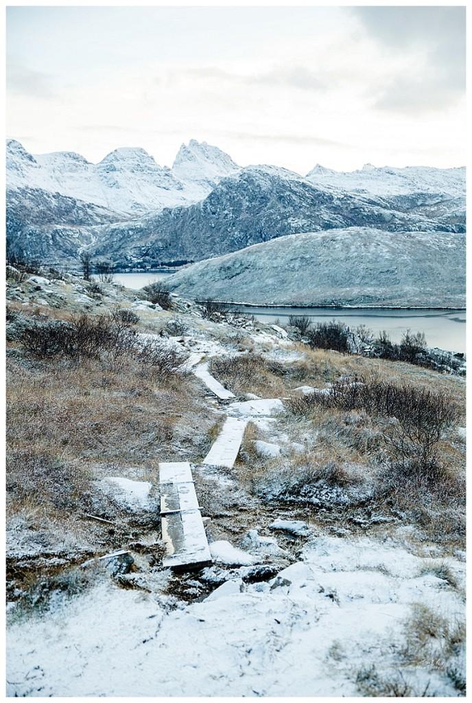 Norway nov15 Cathymarionphotographe-158