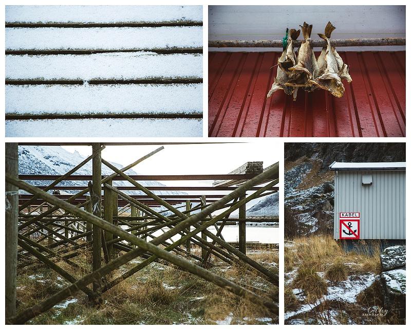 Norway nov15 Cathymarionphotographe-241