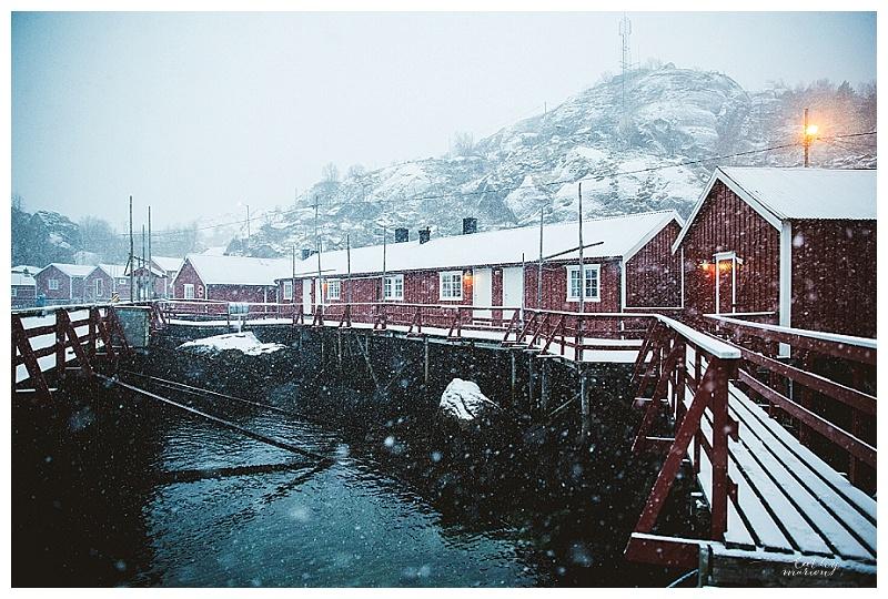 Norway nov15 Cathymarionphotographe-259