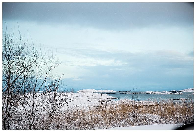 Norway nov15 Cathymarionphotographe-300