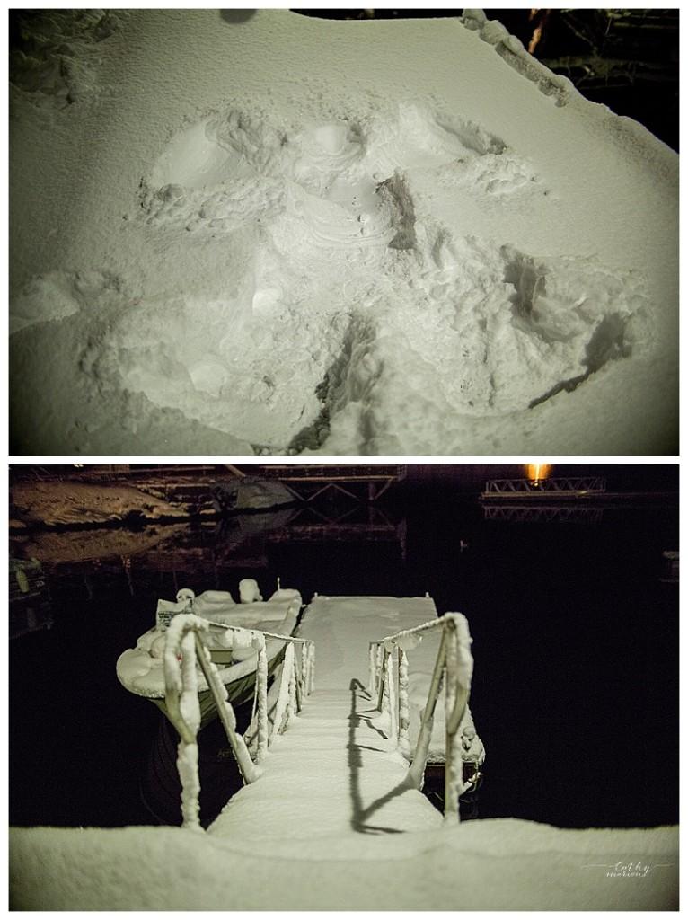 La neige a tout figé.