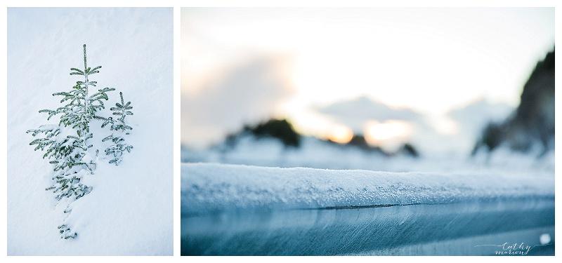 Norway nov15 Cathymarionphotographe-339
