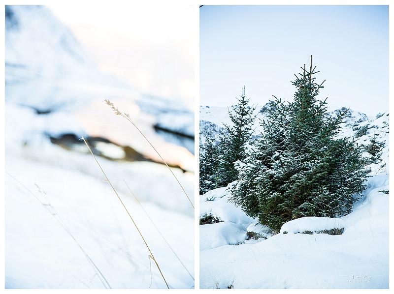 Norway nov15 Cathymarionphotographe-351
