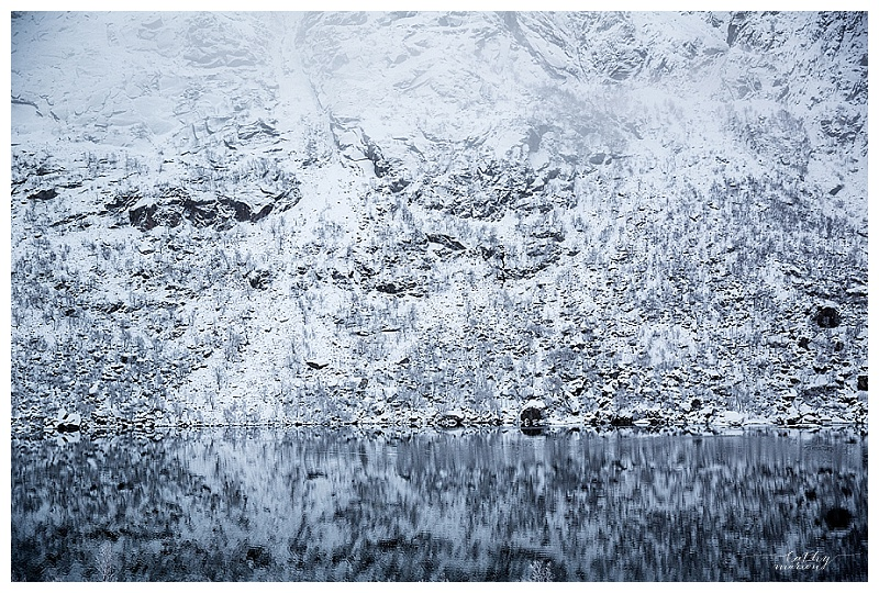 Norway Lofoten nov15 Cathymarionphotographe-550